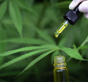 Schmerzen und neuropsychiatrische Erkrankungen: Medizinisches Cannabis