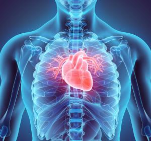 Reoxygenierungsschaden nach HI: Schützender Effekt von Roxadustat in einem Herzmuskelmodell gezeigt