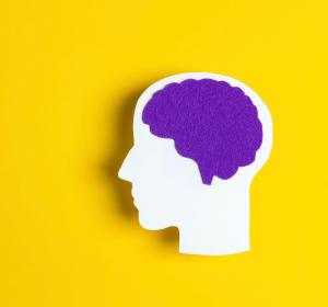 Ultraschall zur Behandlung von Gehirnkrankheiten