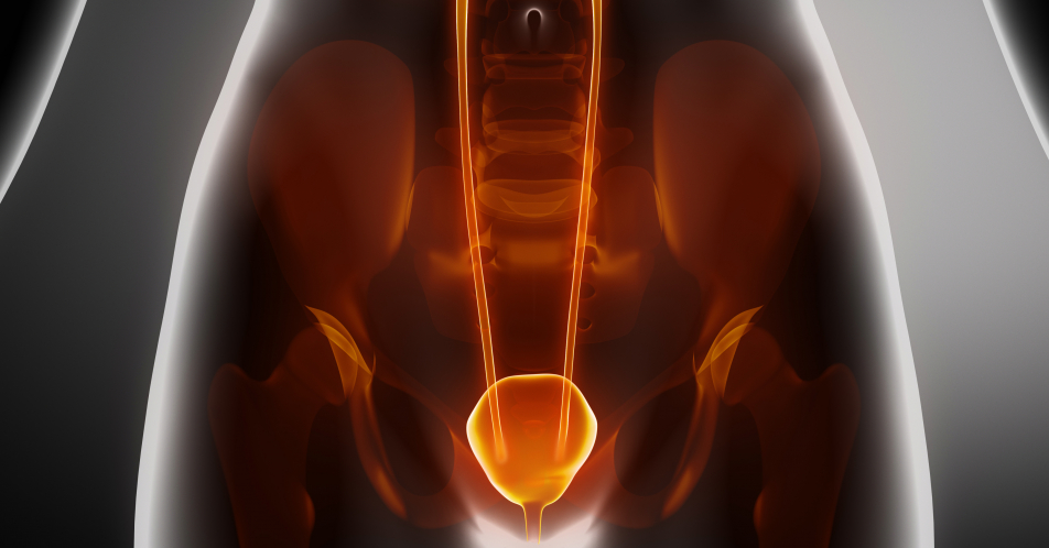 Interstitielle+Cystitis%3A+16+zertifizierte+Anlaufstellen+in+9+Bundesl%C3%A4ndern