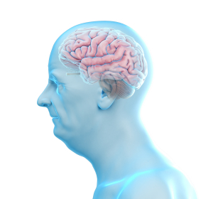 Alzheimer: Initiative fördert Projekt zur Erhöhung des Beta-Amyloid-Abbaus