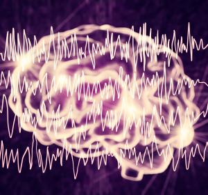 Vernetzung von Nerven: Einfluss der Ionenkanäle