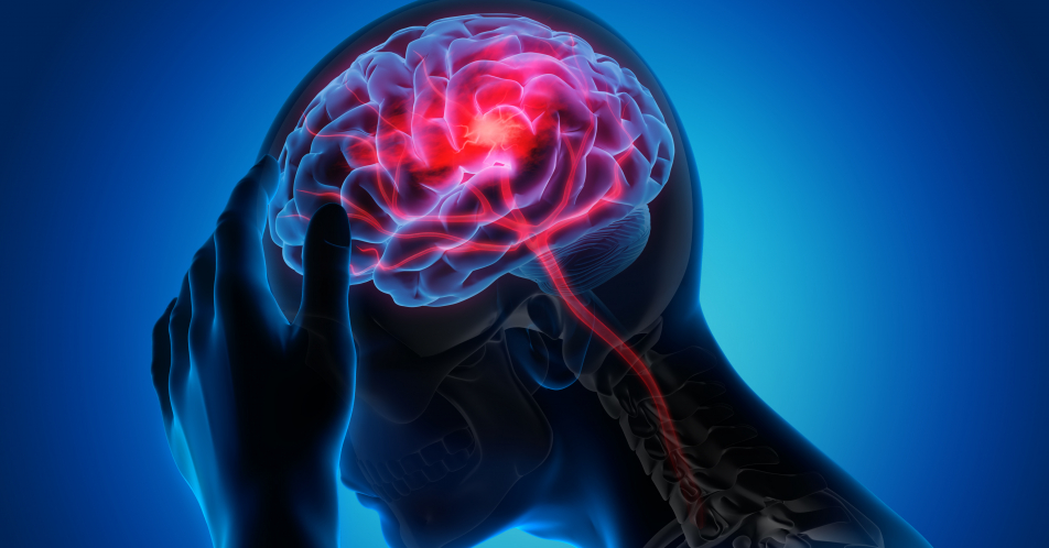 Neurokognitive+Defizite+nach+COVID%3A+Funktionsst%C3%B6rung+der+Hirnrinde+urs%C3%A4chlich
