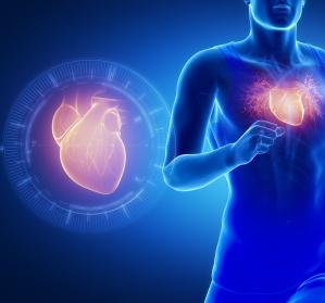 Kardiorenales Syndrom: Welche Rolle spielen SGTL-2-Inhibitoren?