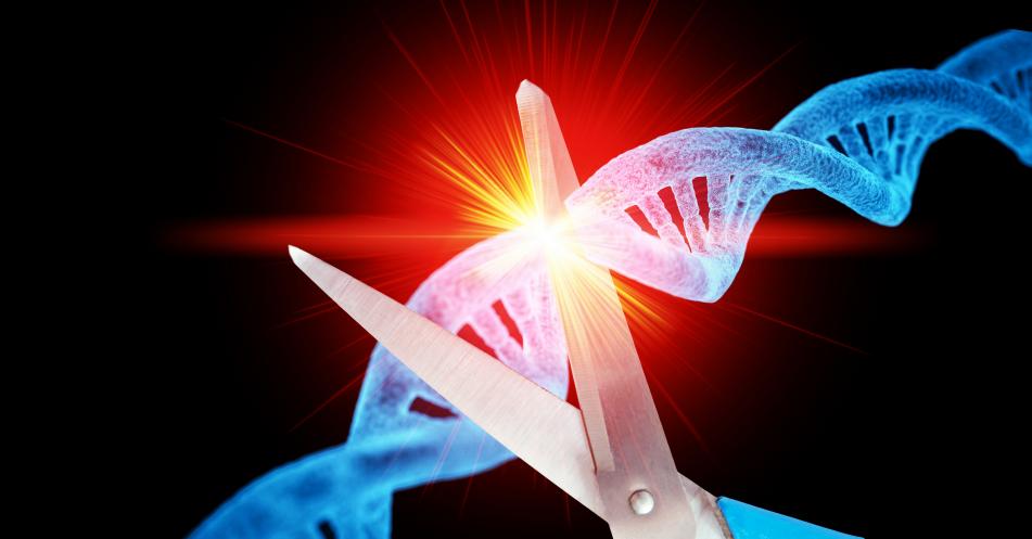 Diagnostiktechnologie+LEOPARD%3A+Neue+CRISPR-Erkenntnisse