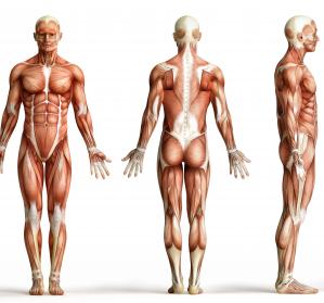 5q-assoziierte spinale Muskelatrophie: Therapieschema und -evaluation mit Nusinersen