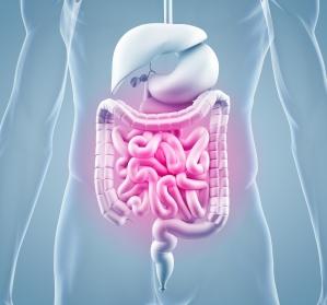 Seltene gastroenterologische Erkrankungen: Multidisziplinäre Versorgung entscheidend für Behandlungserfolg