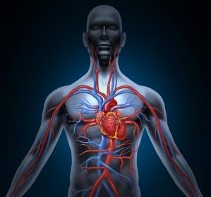 Kardiovaskuläre Hochrisikopatienten: Leitliniengemäß LDL-C senken