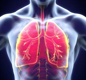 Interdisziplinarität bei Lungenfibrosen – gemeinsam mehr erreichen (1/3)