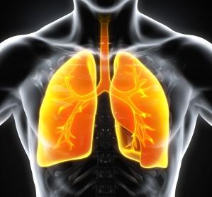 Lungenfibrosen – eine neue Ära der Interdisziplinarität (2/3)