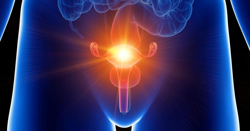 CHMP-Empfehlung%3A+Zulassung+einer+Fixkombination+zur+Behandlung+von+Uterusmyomen%3F