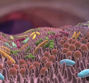 Welche Rolle spielt das Mikrobiom bei Sepsis?