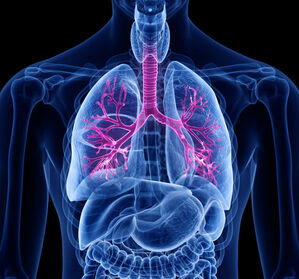 COPD: Bronchodilatation weiterhin Basis der medikamentösen Therapie