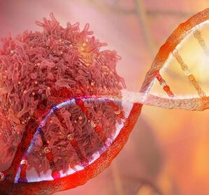 DNA-Material: Neue Strategie zur Behandlung akuter Virusinfektionen