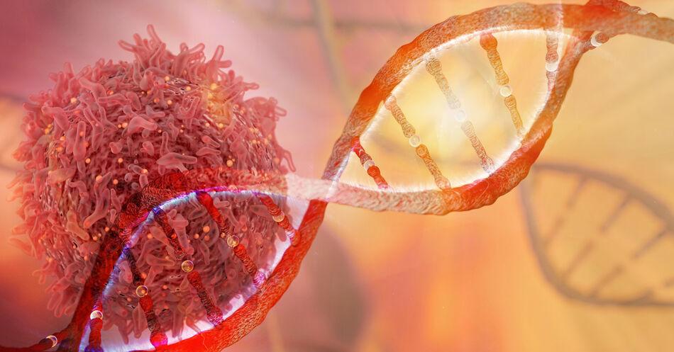DNA-Material%3A+Neue+Strategie+zur+Behandlung+akuter+Virusinfektionen