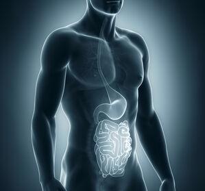 Patientenumfrage M. Crohn: Lebensqualität mit perianalen Fisteln