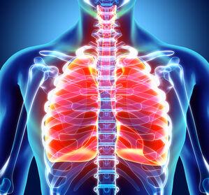 COPD + Niere: Worauf muss bei der Dauertherapie geachtet werden?