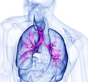 COPD: Sind Kategorien wie Pink Puffer und Blue Bloater noch aktuell?