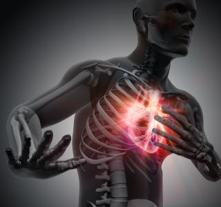 Wenn das Herz stockt: Herzinfarkt erkennen und behandeln