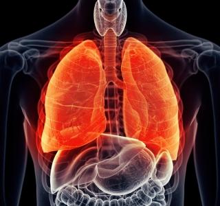 Rolle der Selbstmotivation bei schweren Lungenerkrankungen wie Asthma und COPD