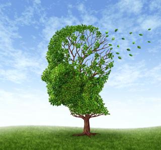 Sind Alzheimer und Demenz das Gleiche?