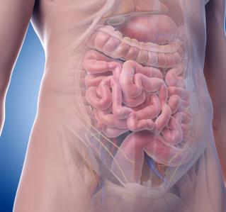 Was können wir aus der Pandemie für die Prävention von Darmkrebs lernen?