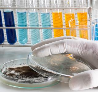 Pilzinfektionen innerer Organe – Oft übersehen und gefährlich!