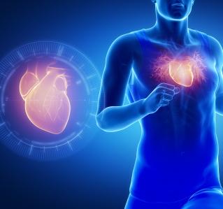 EMAH-Ratgeber: Leitfaden für Erwachsene mit angeborenem Herzfehler