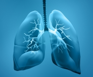 17. Patientenforum Lunge in Stuttgart