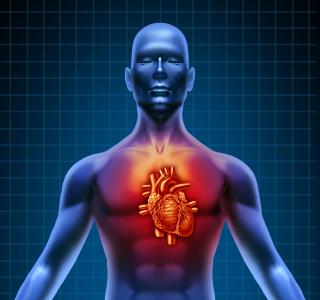 Klinikeinweisung wegen Herzschwäche: Welche Warnsignale müssen Betroffene kennen?
